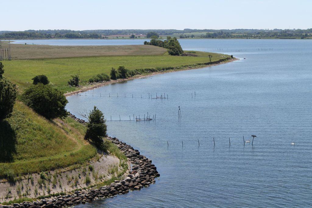 Kyststrækning Koster Vig, hvor der fiskes/samles ålegræs fra stranden